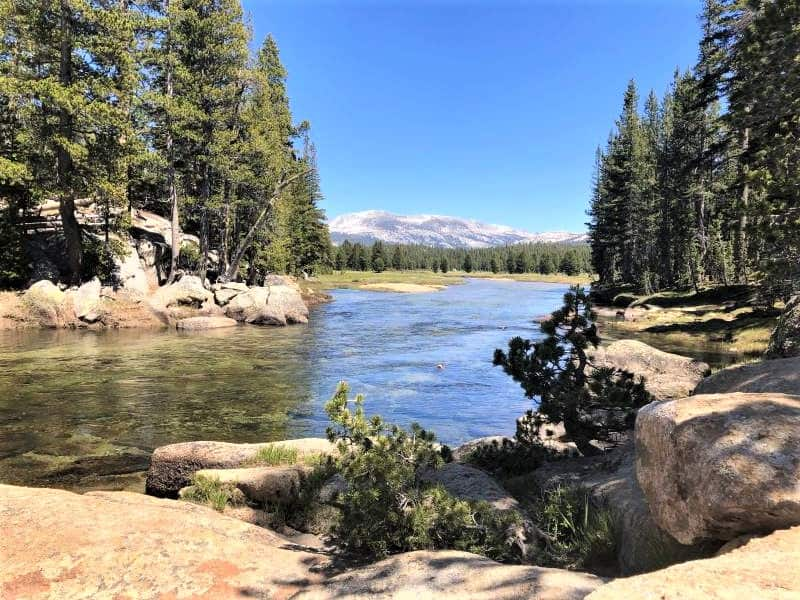 The hike to the Tuolumne River cascades is one of the lesser known easy hikes in Yosemite National Park