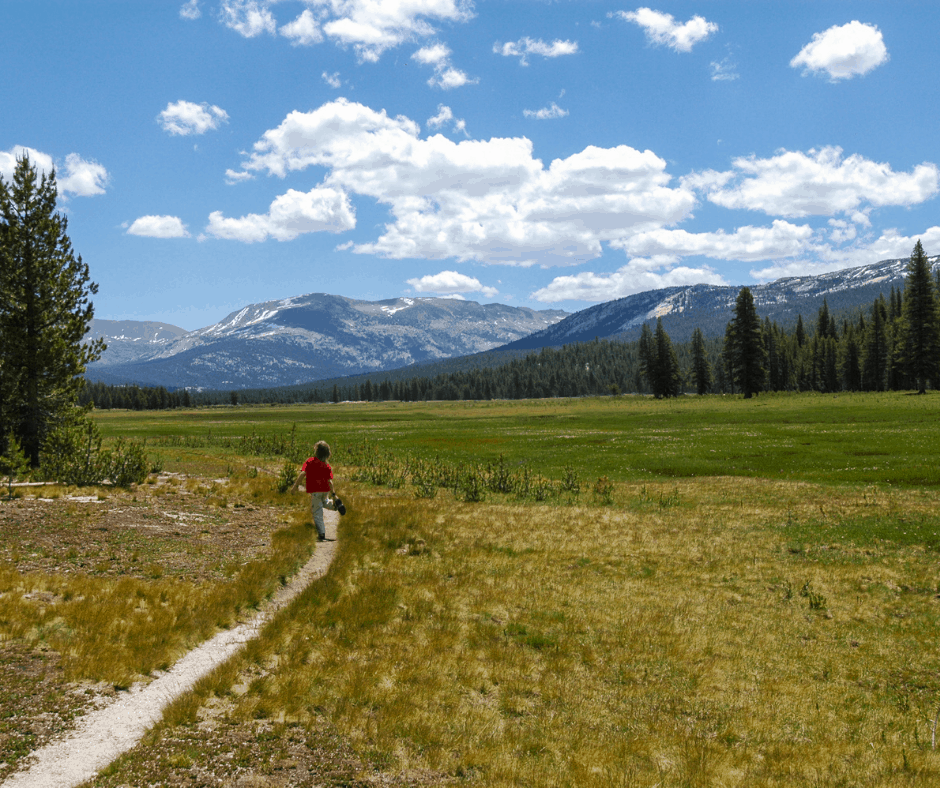 Tuolumne Meadow Trail